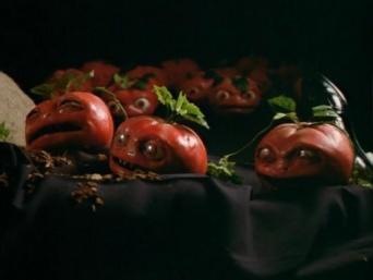 トマトが発する電気信号を数学モデルで分析。菌を媒介して仲間に合図を送っていた(米研究)