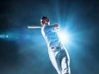 (C)Vasyl Shulga / Shutterstock