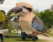 アフター・コロナに必要なものは笑い。大声でさえずる巨大なワライカワセミが登場(オーストラリア)
