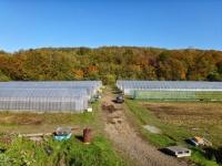 農業法人(株)ふるさとファームのプレスリリース画像
