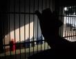 脱獄から30年、新型コロナの影響でホームレスになった男が「刑務所に戻りたい」と警察に出頭