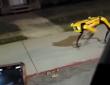犬っぽいけど犬じゃない!偶然ばったり犬型ロボット「スポット」に遭遇した人の反応