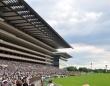 競馬の祭典・日本ダービー