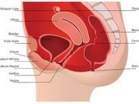 骨盤底筋を鍛えれば「産後の膣のゆるみ(老化)」が改善できる(depositphotos.com)