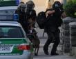 シドニーで警察によるワラビーの追跡劇!