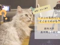 「ネコの気持ち」はどこまでわかる?-麻布大学・高木博士の研究