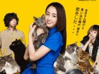映画『猫は抱くもの』公式サイトより