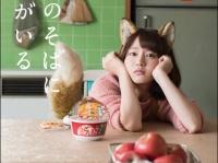※イメージ画像:「どん兵衛 公式Twitter(@donbei_jp)」より