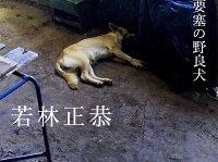 『表参道のセレブ犬とカバーニャ要塞の野良犬』(KADOKAWA)