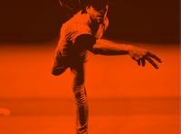 (C)Beto Chagas / Shutterstock