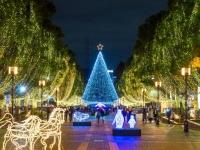 2017年クリスマスはおうちor外デートどっちの予定? 大学生カップルに調査!
