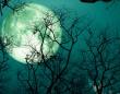 8月の満月はスタージェンムーン。8月4日に日付が変わったら次のステージの計画を立てよう