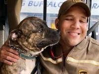 保護施設の犬、配達員にロックオン。車に飛び込み飼い犬となる(アメリカ)