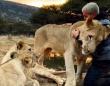 ライオンたちは覚えていた!2か月ぶりの男性との再会に体をすり寄せ愛情を示す