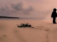 なぜ海難事故を防げたのか? 沖縄土着の霊能者「ユタ」インタビュー