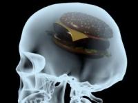 ジャンクフードは脳にも悪い (shutterstock.com)