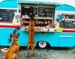 犬専用の移動販売車が登場。散歩中の犬たちに手作りの犬用おやつを(アメリカ)