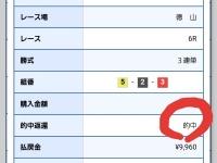 ボートレース徳山G3オールレディースで99.6倍ゲット!