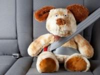 2008年6月の道交法改正で「後席もシートベルト着用」も義務化されたが(shutterstock.com)
