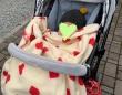 紺野あさ美オフィシャルブログ「もりもりごはんと子育て日記」より