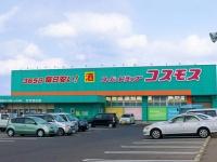 コスモス薬品の店舗(「Wikipedia」より)
